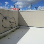 Elastromertic Wall Painting
